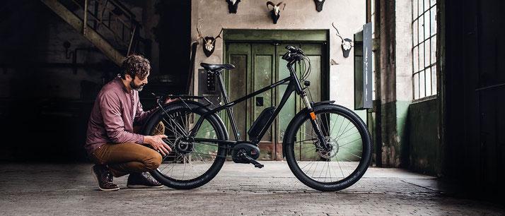 e-Bike Rahmenform Diamant Herren