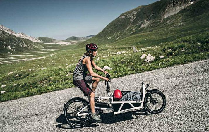 Riese und Müller Cargo e-Bike / Lastenvelo Load 2019
