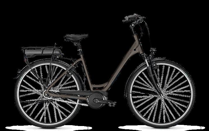 Raleigh Cardiff 8 mit Bosch Antrieb 2020 City e-Bike