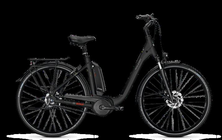Raleigh Kingston Premium - City e-Bike - 2018