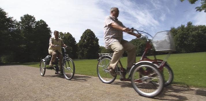 Dreirad für Senioren Pfau-Tec Bene