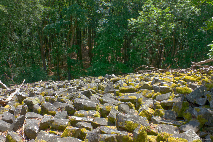 NSG Großer Stein