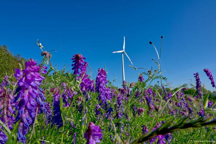 Windräder auf der Hochfläche bei Friedewald