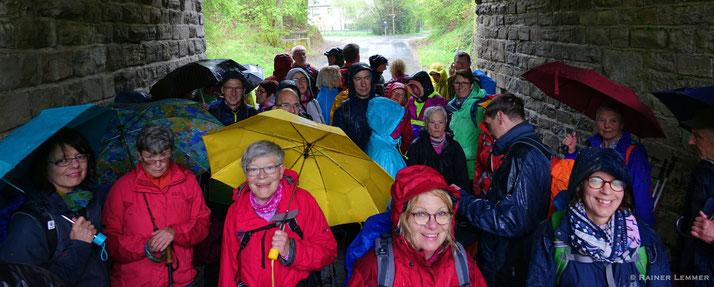 WW-Steig Etappe 13 - die Natur braucht den Regen!