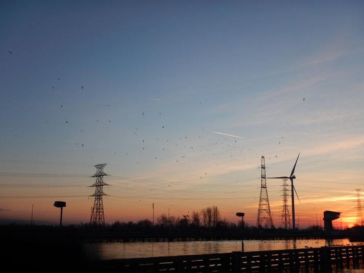 Zuidwind, het windturbineproject in het industriegebied Genk Zuid