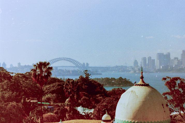 Der Blick vom Botanischen Garten auf den Harbor von Sydney