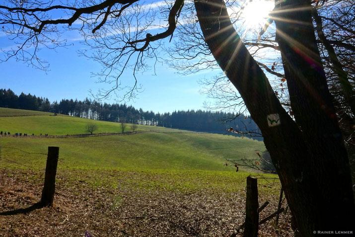 WW-Steig Etappe 15 bei Weißenfels