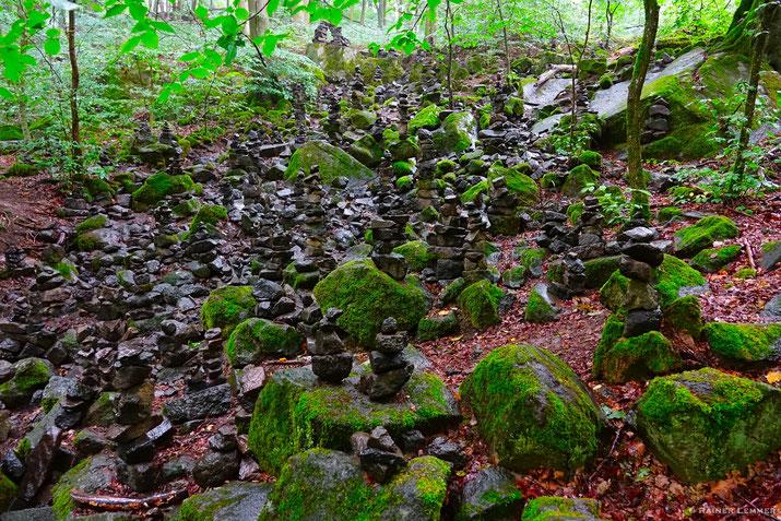 Stein-Männesjer in der Holzbachschlucht