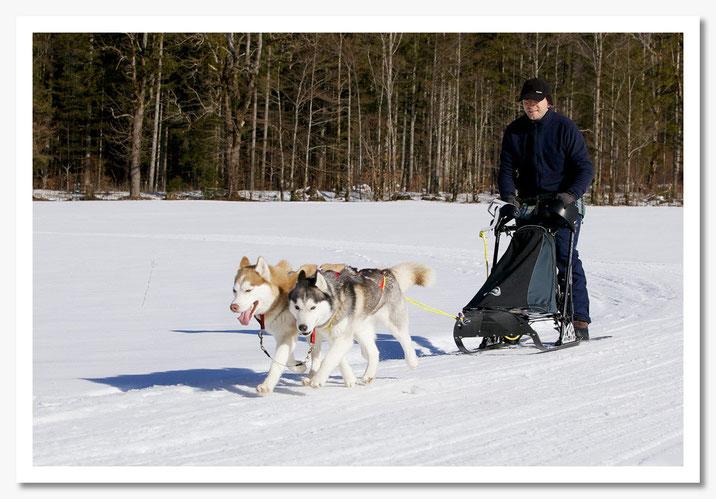 Alaska & Amy mit Musher Herbert  © c.rebl