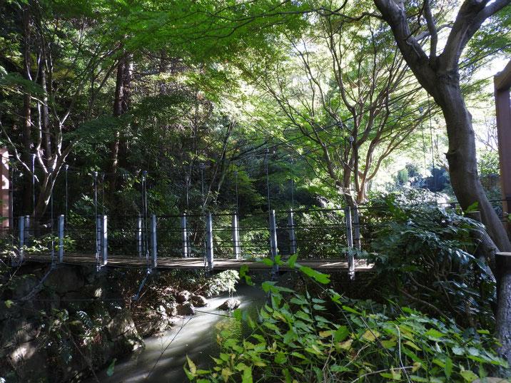 秋の親水公園遊歩道の吊り橋 2017/11/09撮影