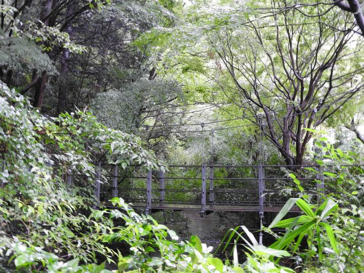親水緑道吊り橋 2018/09/30撮影