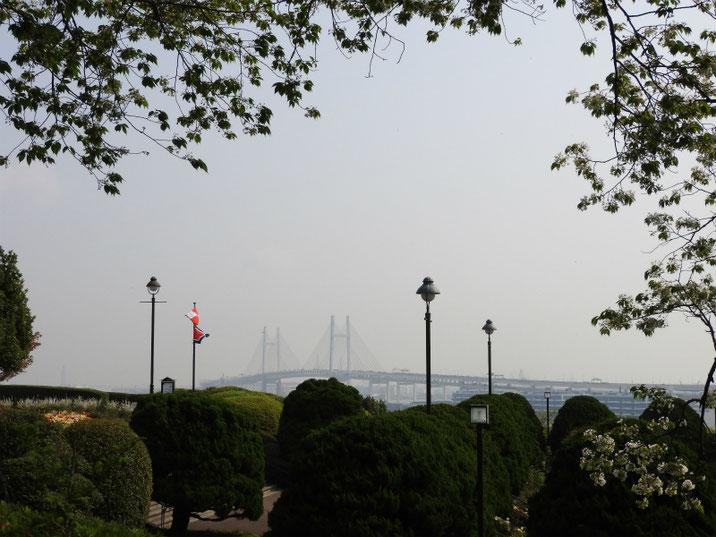 港の見える丘公園 ローズガーデンから海をみる 180403撮影