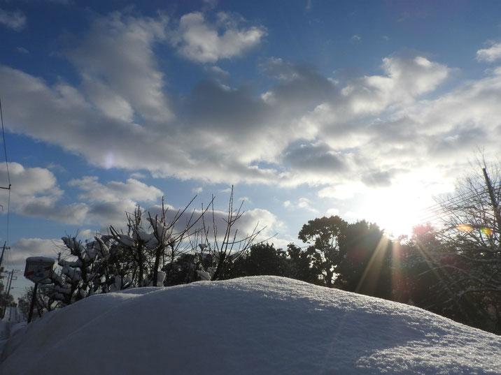 雪景色 散策路 180123撮影