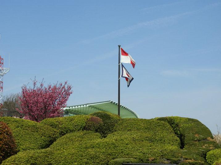 山手 港の見える公園 170405撮影