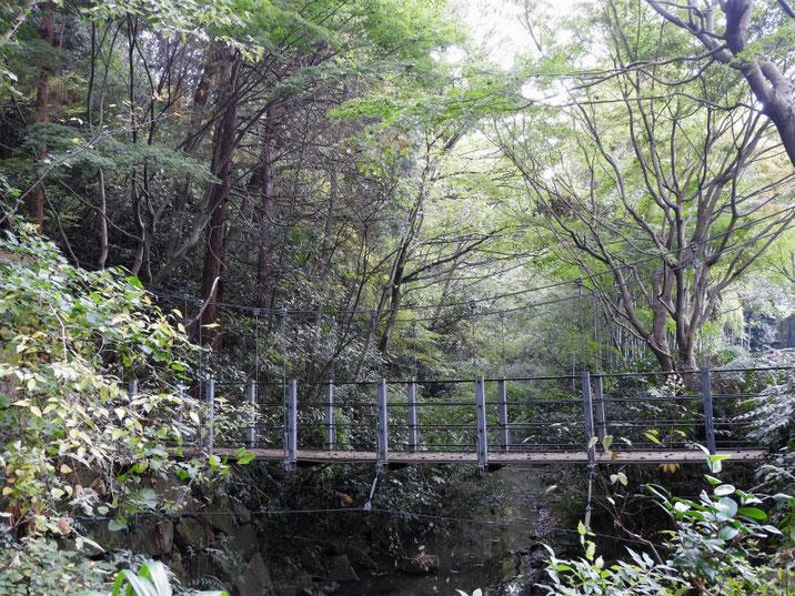 親水緑道の吊り橋 2018/11/03撮影