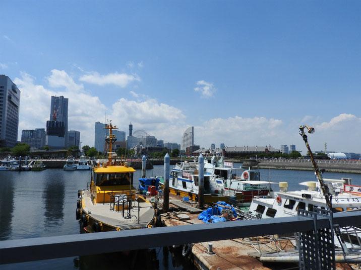 横浜港 像の鼻パークから 2018/06/02撮影