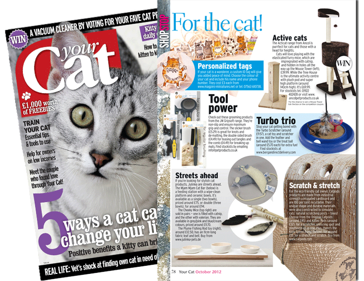 Cover & Artikel Your Cat Magazine