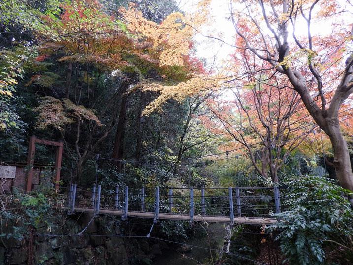 親水緑道の吊り橋 2020/12/11撮影