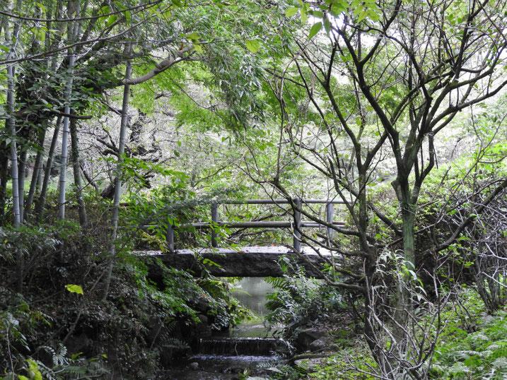 親水緑道の橋 2019/10/11撮影