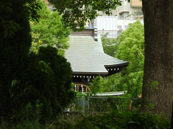 稲荷大明神稲荷神社 散策路 2020/07/12撮影