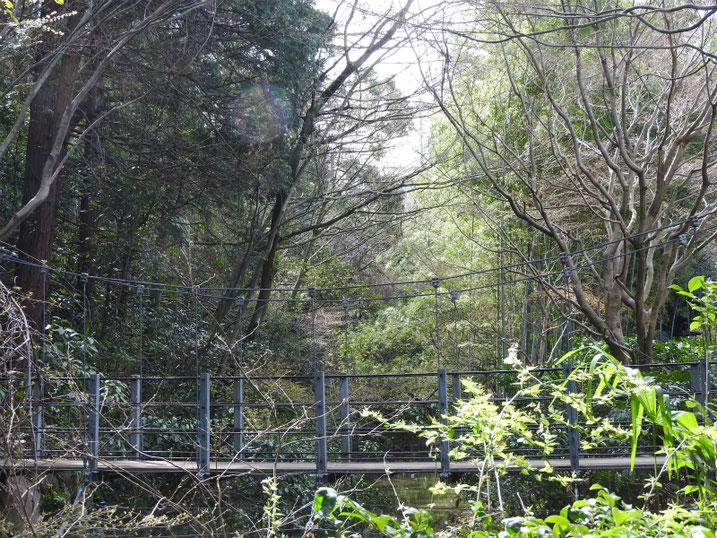 3月の親水緑道の吊り橋 2020/03/15撮影