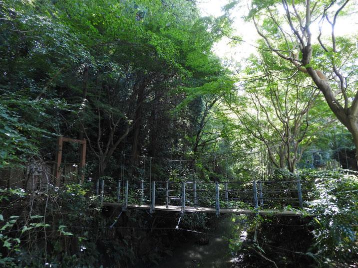 親水緑道の風景 2020/10/13撮影
