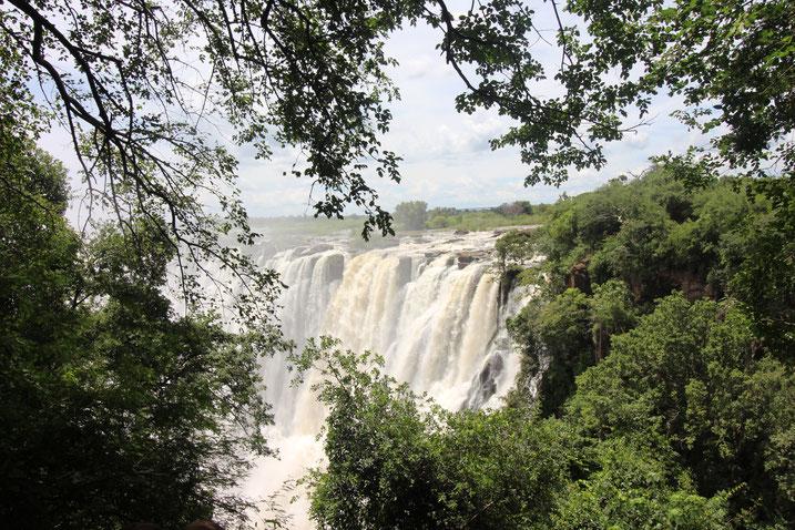 Weltreise Reiseblog Sambia Simbabwe Afrika Victoria Falls Viktoria Falls Wasserfälle Livingston