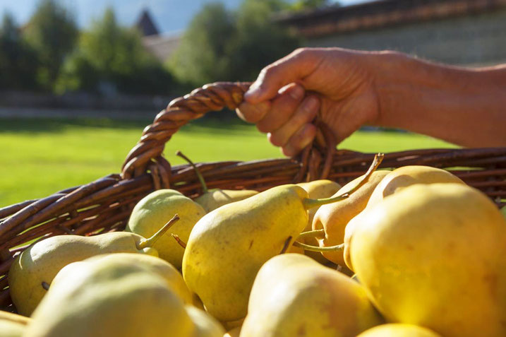 "Palabiramarkt - Mercato della pera ""Pala"" - Gourmet Südtirol"