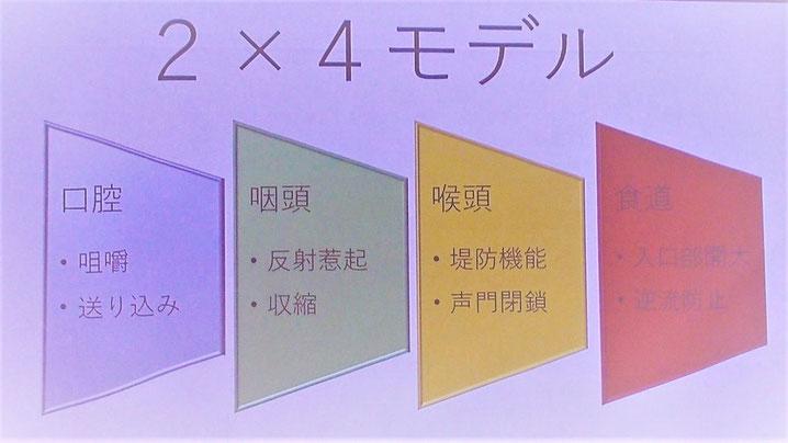 2×4理論(口腔・咽頭・喉頭・食道の4つの器官に各2つの機能障害)の説明