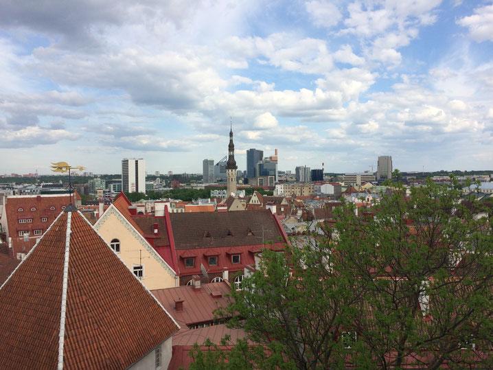 Ausblick von der Altstadt Tallinns: Vorn Kirche, hinten Hochhäuser