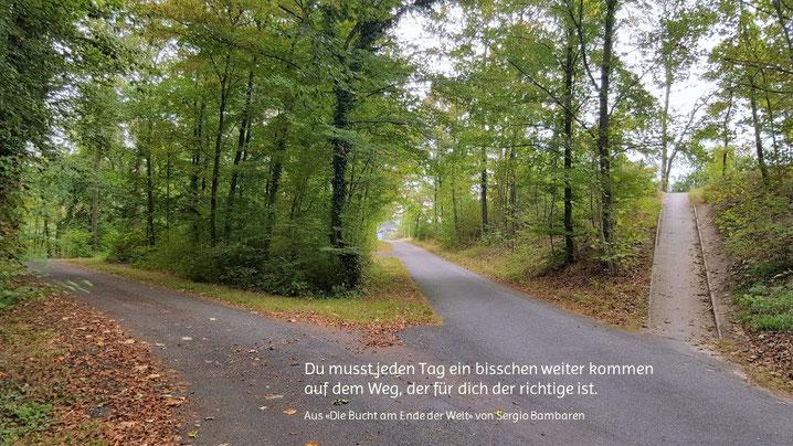 Drei Wege mit Zitat von Sergio Bambaren - copyright by co-comm.ch