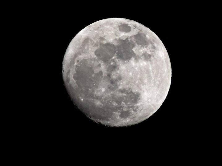 La luna nos seguía en cada paso entre el mar de Dénia y el paseo marítimo. Al acabar la noche nos esperaba El Marino