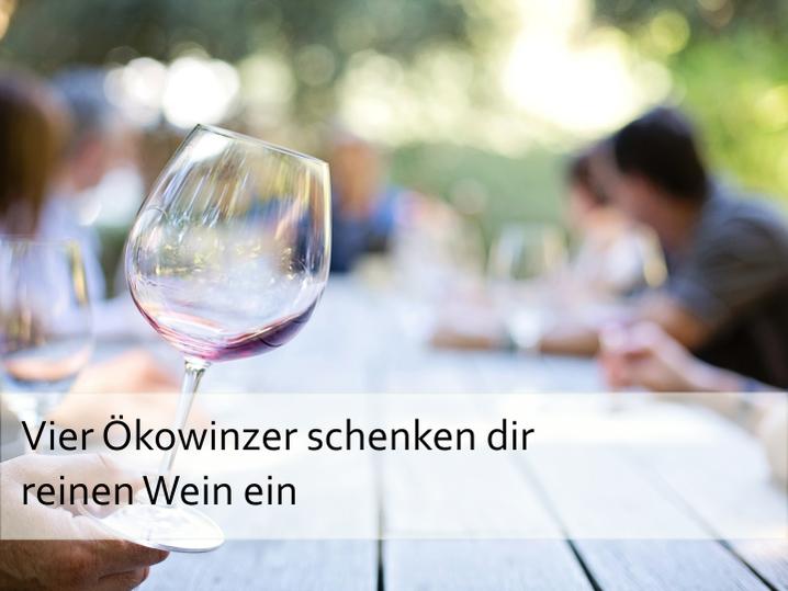 Vier Ökoweinzer schenken dir reinen Wein ein