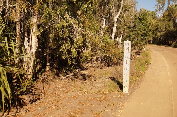 Beste Reisezeit, Australien, Elsey National Park
