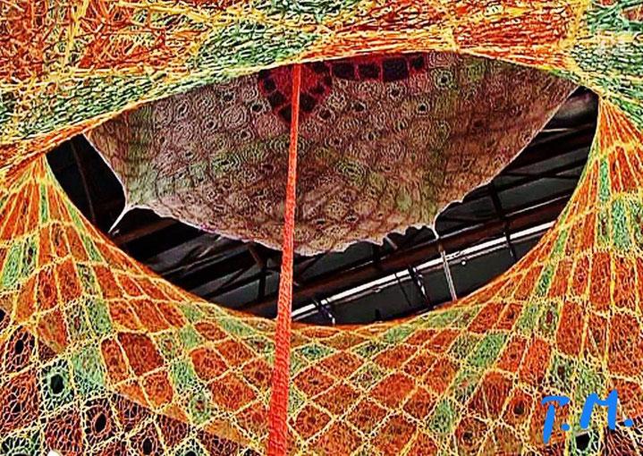 Pedro Meier – Ernesto Neto – »Gaia Mother Tree« – Baumwolle geknüpft, Zurich HB – Fondation Beyeler – © Pedro Meier Multimedia Artist, Atelier Gerhard Meier Weg Niederbipp / Bangkok Golf von Thailand – FLUXUS DADA, DiaryArt, Visarte, SIKART Zürich