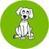 Fassisi CanDis Test zum Nachweis von Canine Distemper von Hunden