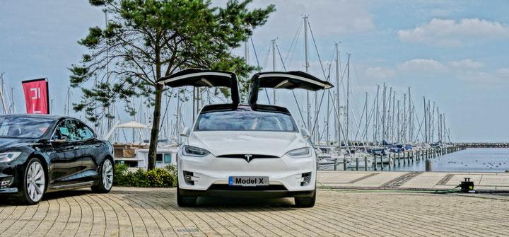 elektronisches Fahrtenbuch Tesla Model X