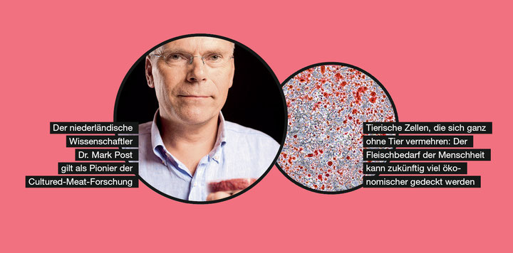 Cultured-Meat-Forschung: Dr. Mark Post