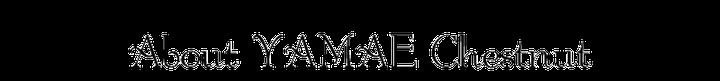 Yamae Chestnut