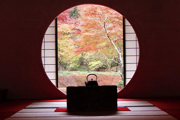 鎌倉大仏が手と指でつくる「輪」の意味