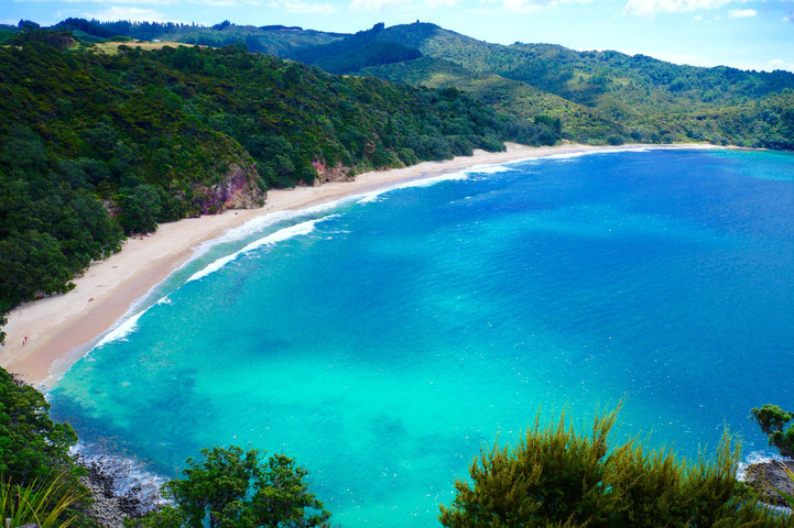 A secluded beach at the Coromandel