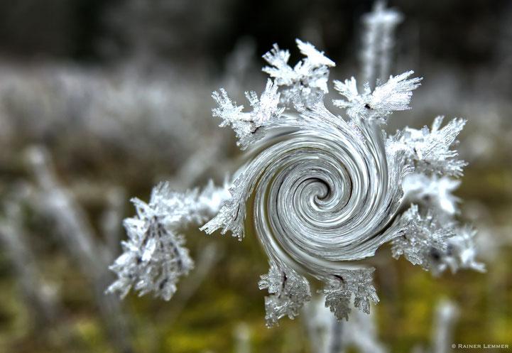 Eisblumen in der Bacher Lay