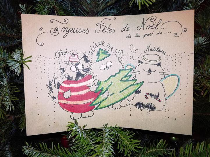Image Brillante De Noel.Margot La Plus Brillante Des De Noel Garde De Chats A
