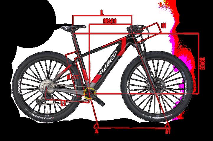 Wilier 101X HY Geometrie Italian Cycle Experience