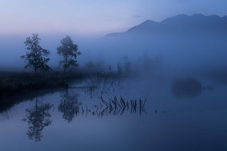 Nebelmorgen, 8. Platz Kategorie Landschaften