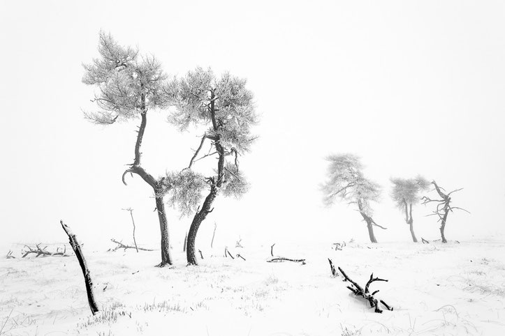 Noir Flohay, 3. Platz Kategorie Landschaften