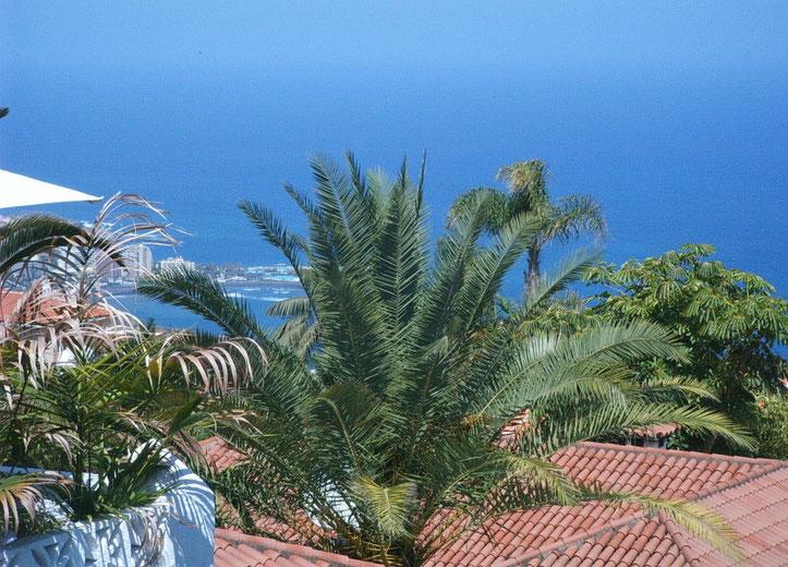 VomUrlaubs Bungalow Ursula hat man einen phantastischen Blick auf den Atlantik