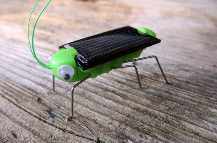 Flitzi, die Solargrille - Spielspaß mit Sonnenstrom