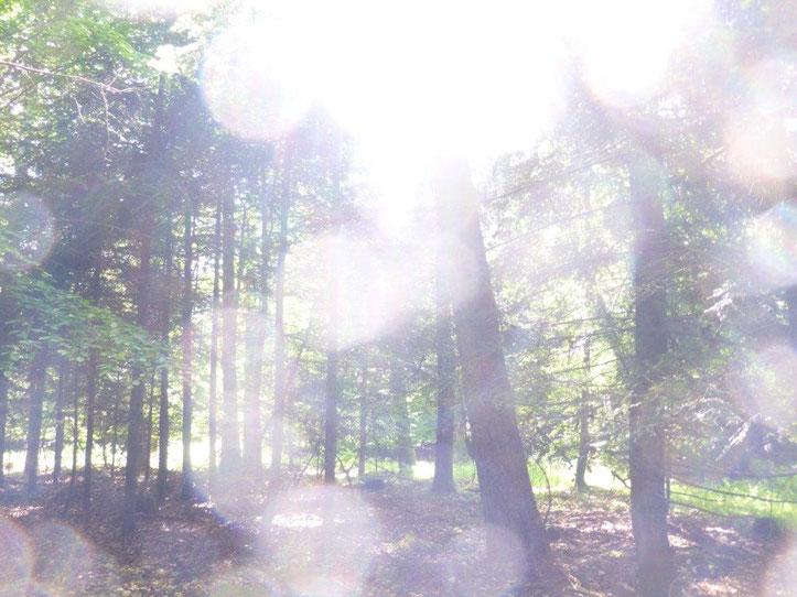 Göttlicher Energiestrom, Quelle: www.lichtwesenfotografie.com