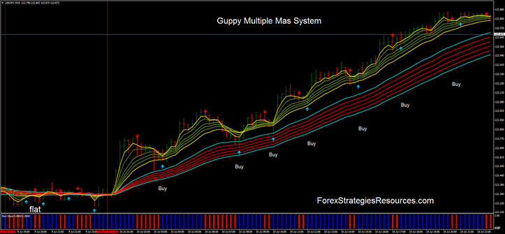 Guppy Multiple Mas System